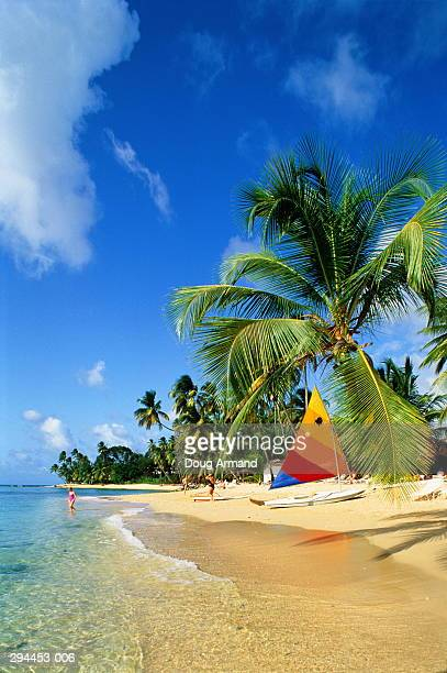 barbados, mullins bay, kings beach - barbados stock pictures, royalty-free photos & images