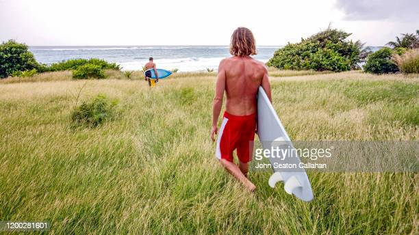 barbados, surfing in the atlantic ocean - bridgetown barbados stock pictures, royalty-free photos & images