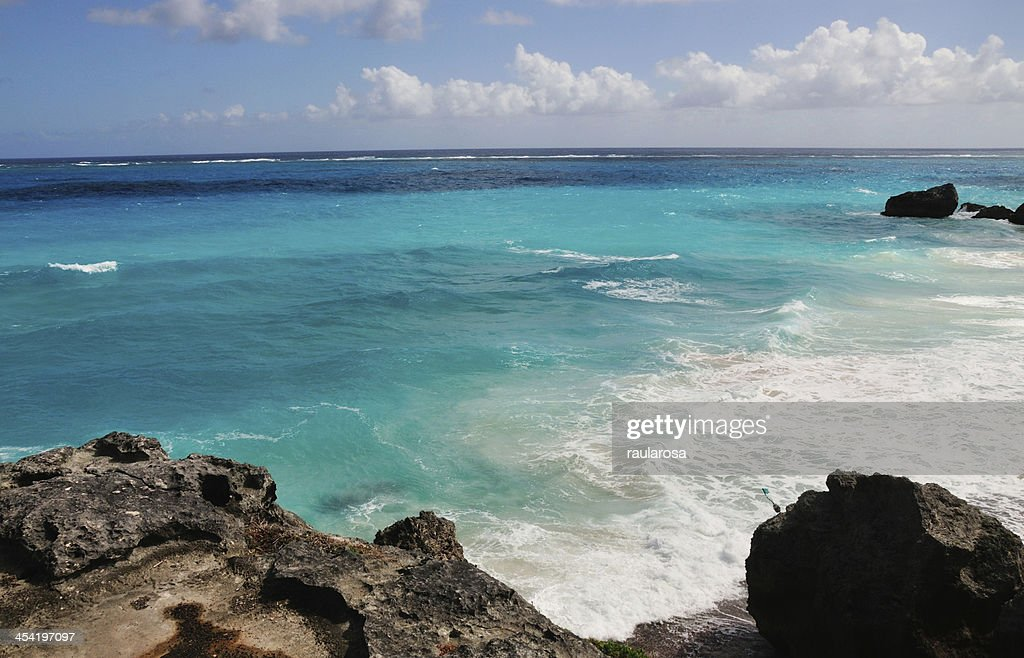 Barbados aislada : Foto de stock