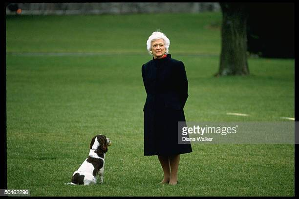 Barbara Bush w. Family dog Millie, poised on WH lawn waiting for Pres. Bush, ready to leave for Camp David.