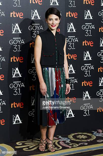 Barbara Lennie attends Goya Awards Candidates 2016 Cocktail at Ritz Hotel on January 12, 2017 in Madrid, Spain.
