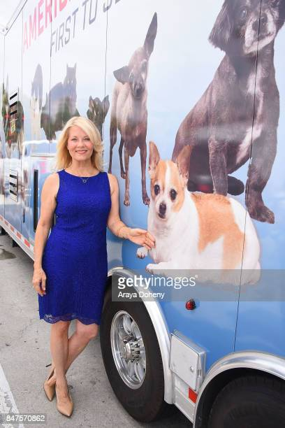 Barbara Niven attends the American Humane unveiling of the California Rescue Truck at The Beverly Hilton Hotel on September 15 2017 in Beverly Hills...