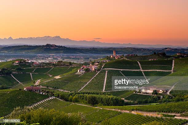 barbaresco vineyards at dusk - piedmont italy stock pictures, royalty-free photos & images