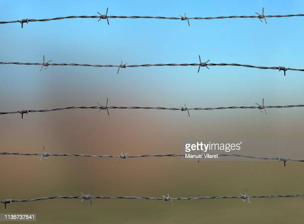 barbed fence - barbed wire stock pictures, royalty-free photos & images