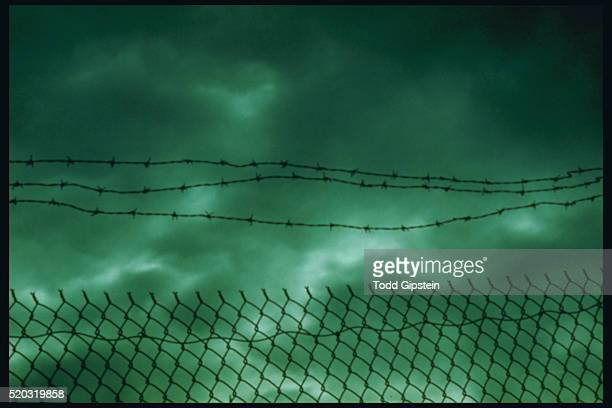 barbed wire and chain-linked fence with green sky - gipstein stock pictures, royalty-free photos & images