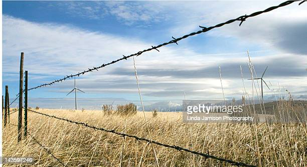 barbed wire and windmills - idaho falls stock photos and pictures