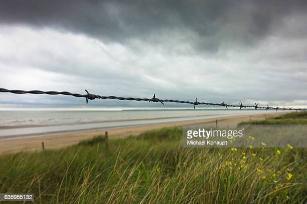 barbed wire at utah beach - utah beach stock photos and pictures