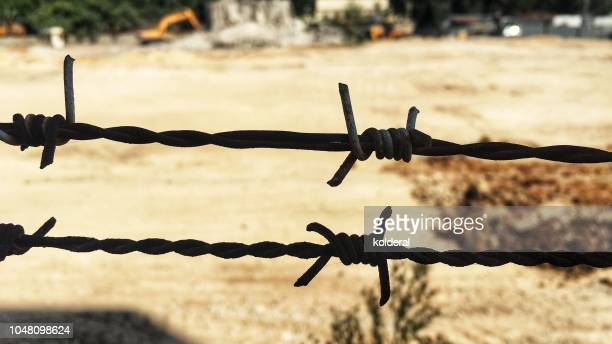 barbed wire close-up - genocide stock pictures, royalty-free photos & images