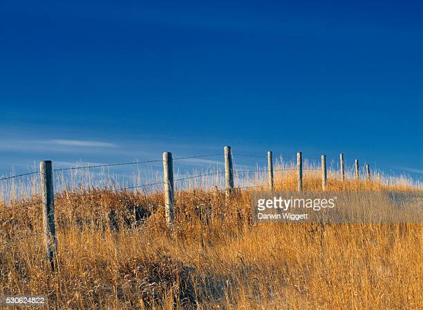 Barbed Wire Fence And Cropland Near Linden, Alberta, Canada
