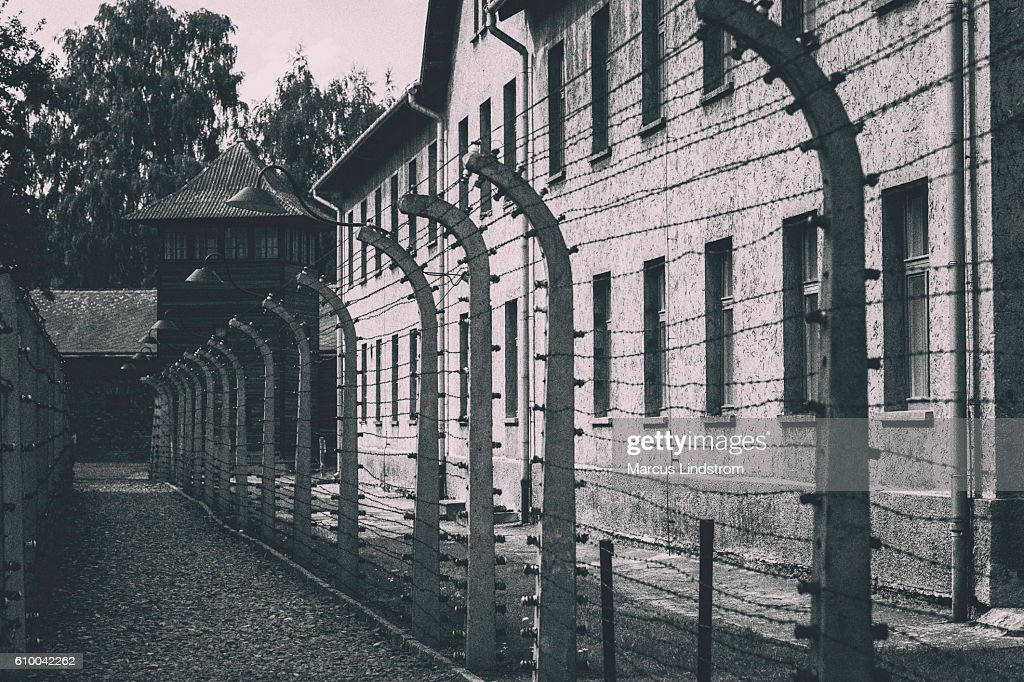 Barbed wire fence at Auschwitz : Stock Photo