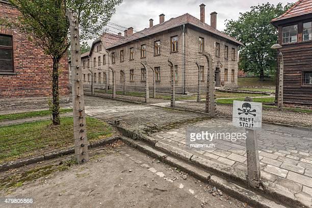 Filo spinato recinzione in Auschwitz I. campo di concentramento