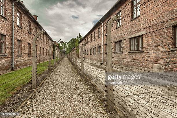 barbed wire fence in auschwitz i. concentration camp - auschwitz stock pictures, royalty-free photos & images