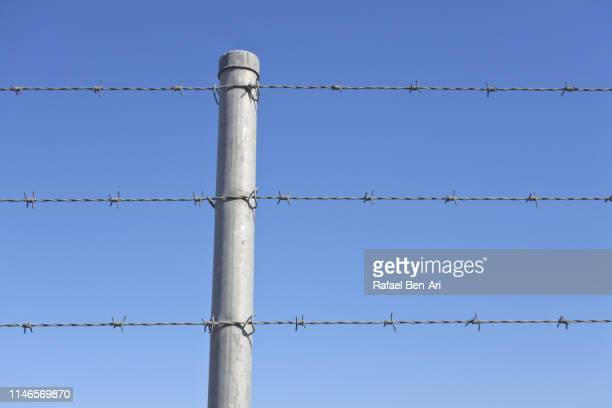 barbed wire fence - rafael ben ari stock pictures, royalty-free photos & images