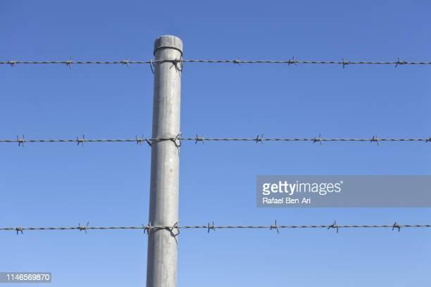 barbed wire fence - rafael ben ari 個照片及圖片檔