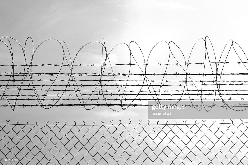 Fine Triple Strand Concertina Wire Obstacle Mold - Electrical ...