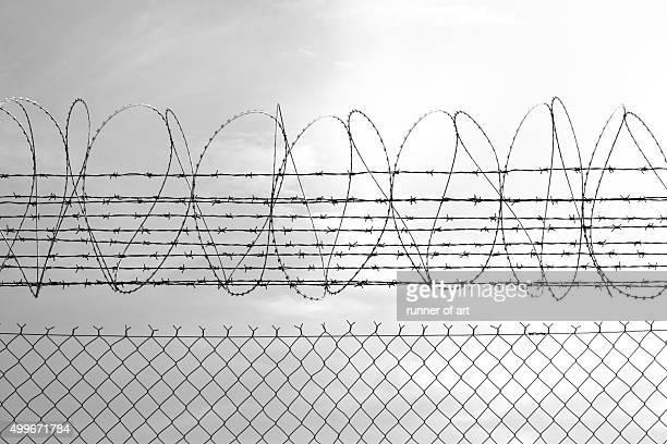 barbed wire fence - razor fotografías e imágenes de stock