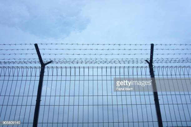 barbed wire fence - barbed wire stock pictures, royalty-free photos & images