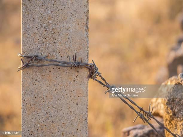 barbed wire on a fence post in the dehesa in salamanca - ana guerra fotografías e imágenes de stock