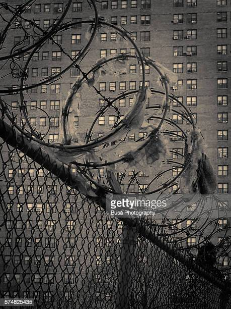 Barbed wire on fence and a housing project, NYC