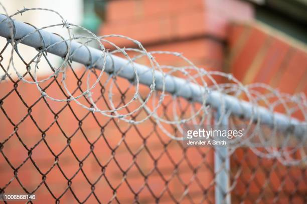 barbed wire - psychiatric hospital stock pictures, royalty-free photos & images