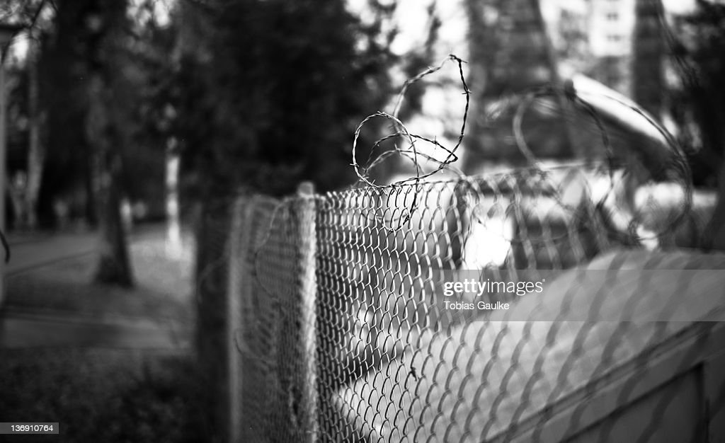 Barbed wire : Stock-Foto