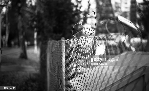 barbed wire - tobias gaulke stock-fotos und bilder