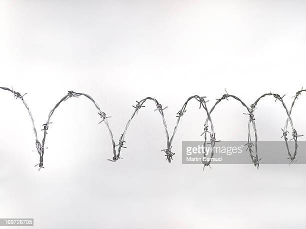 barbed wire - barbed wire stock pictures, royalty-free photos & images