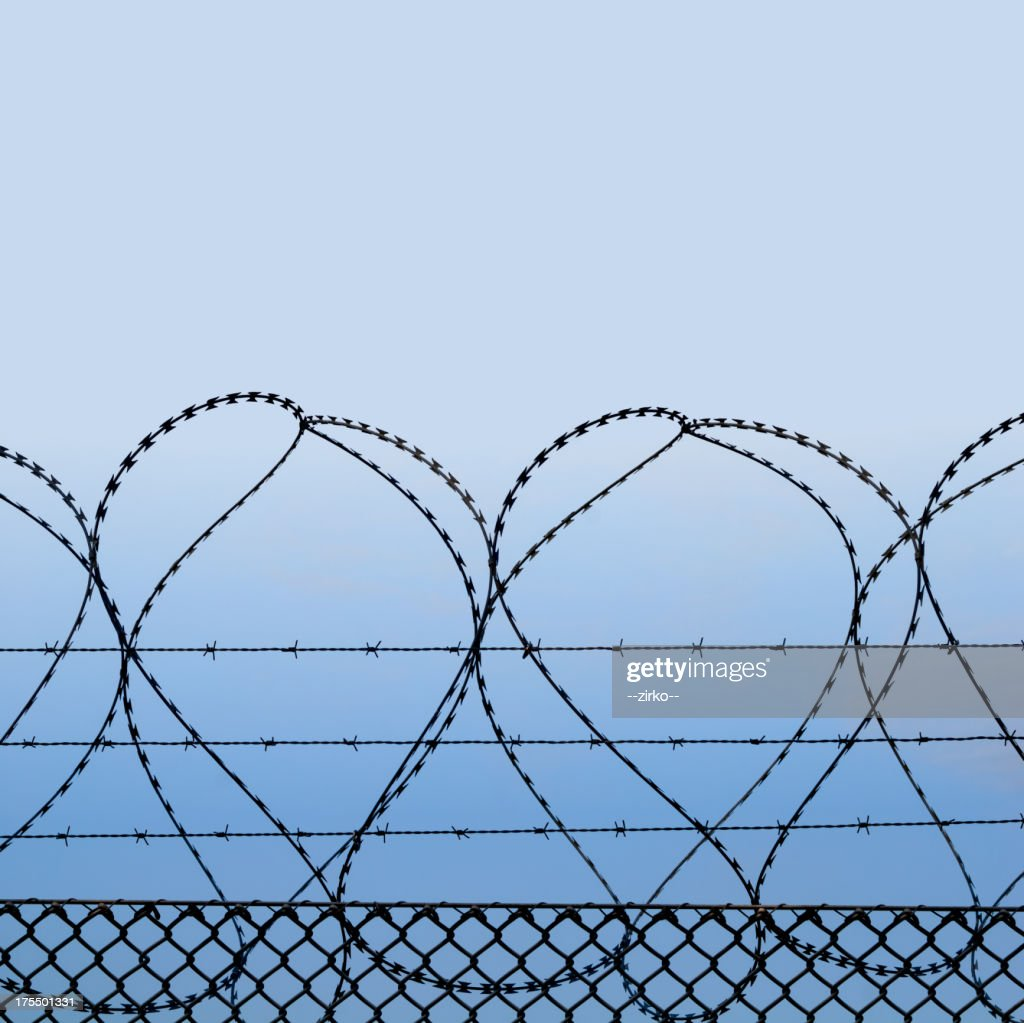Barbed wire : Stock Photo