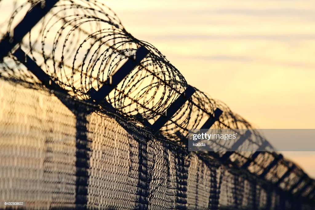barbed wire steel wall against the immigrations in europe : Stock Photo