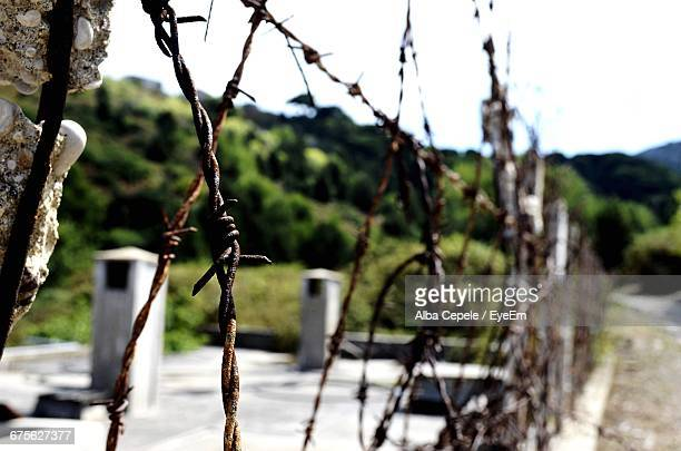 Barbed Wired Fence On Sunny Day