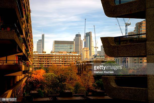 Barbican Autumn gardens and city towers