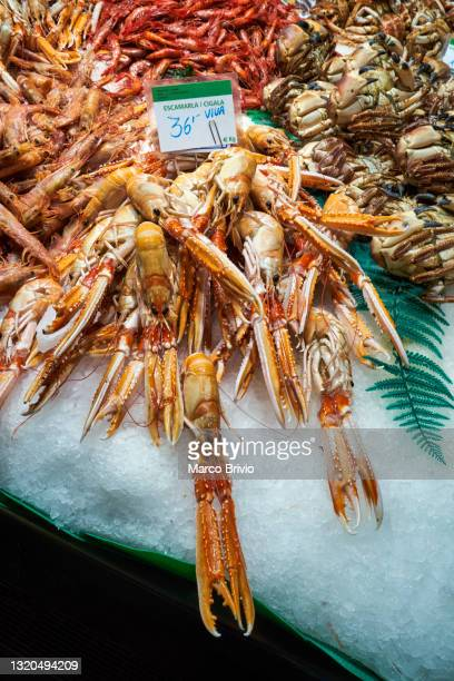 barcelona. catalonia. spain. fishmonger at the mercat de sant josep de la boqueria - marco brivio stock pictures, royalty-free photos & images