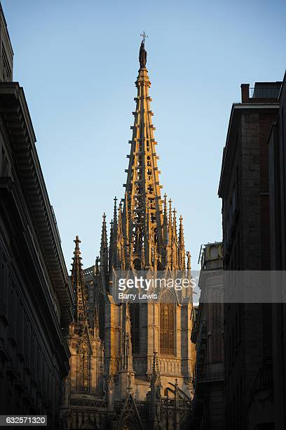 Barcelona Cathedral the Cathedral of the Holy Cross and Saint Eulalia Barcelona Spain seen from Pla de la Seu