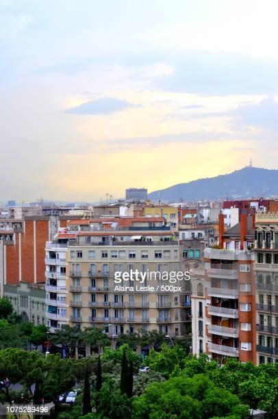 Barcelona Skyline Portrait