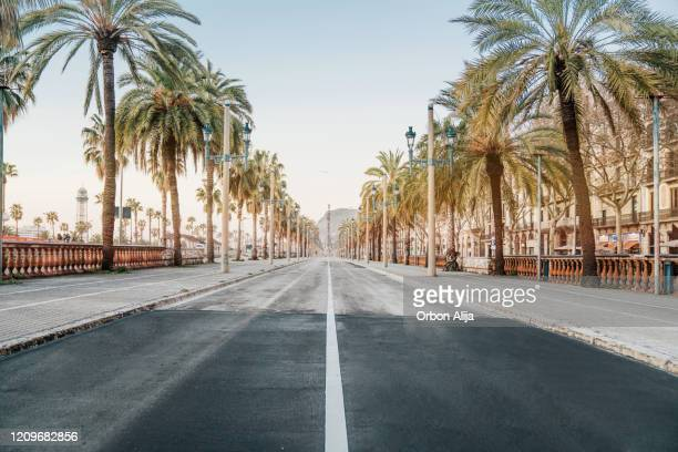 barcelona sunrise at the street - boulevard stock pictures, royalty-free photos & images