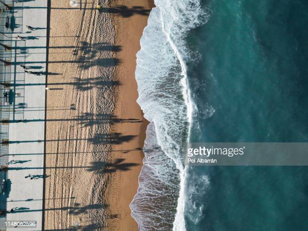 barceloneta beach - basilica stock pictures, royalty-free photos & images