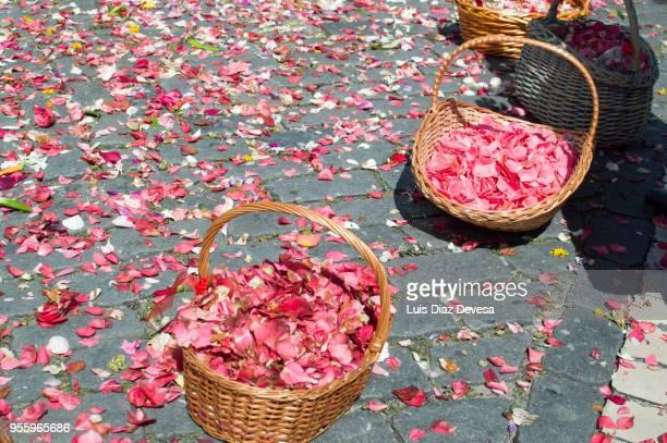Barcelos' Flower Festival (Portugal)