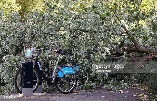 Barclays cycle hire bike is submerged by a fallen tree as Britain faces travel chaos after severe weather conditions on October 28 2013 in Lambeth...