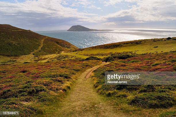 bardsey island - wales stock pictures, royalty-free photos & images