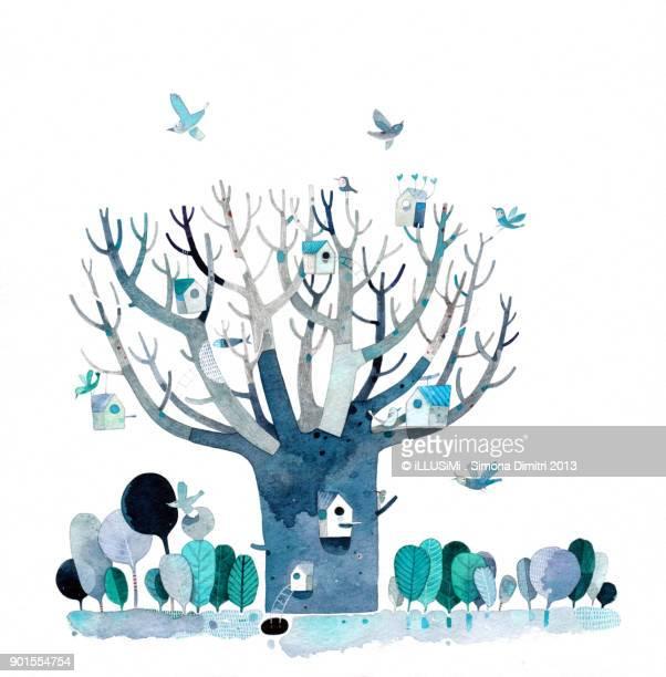 bare branches - simona dimitri stock-fotos und bilder