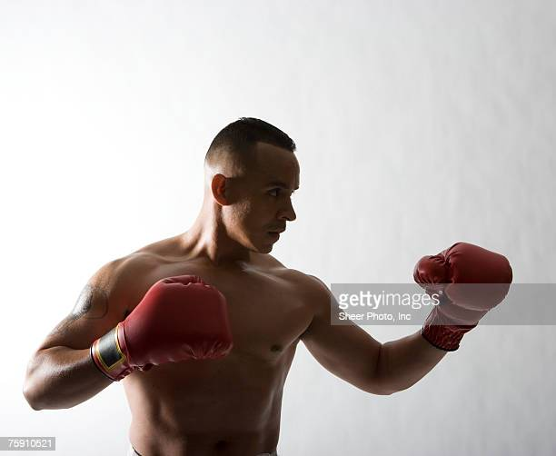 bare chested man boxing - chest barechested bare chested stock-fotos und bilder