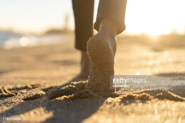 bare feet of a woman, walking on the beach - piedi foto e immagini stock