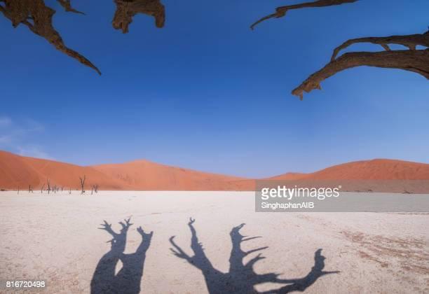 Bare Tree In Desert Against Blue Sky at Deadvlei, Sossusvlei in Namibia