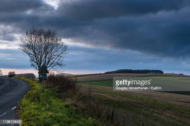 bare tree on field by road against sky - gillingham stock pictures, royalty-free photos & images