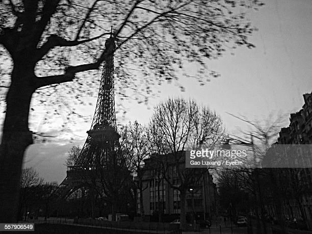 Bare Tree With Eiffel Tower In Background At Dusk