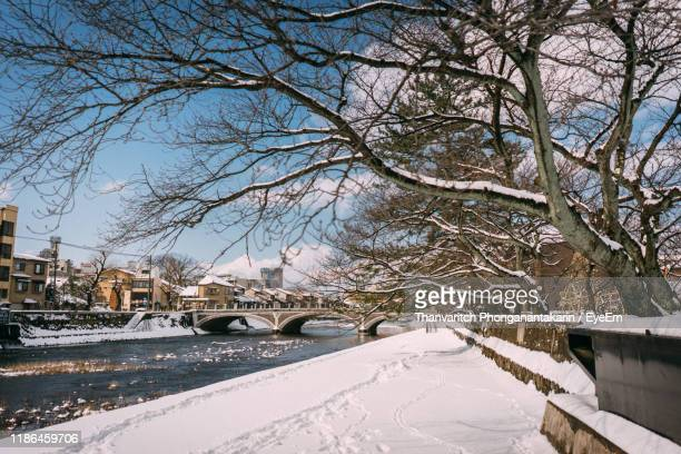 bare trees by snow covered canal during winter - bare tree stock pictures, royalty-free photos & images