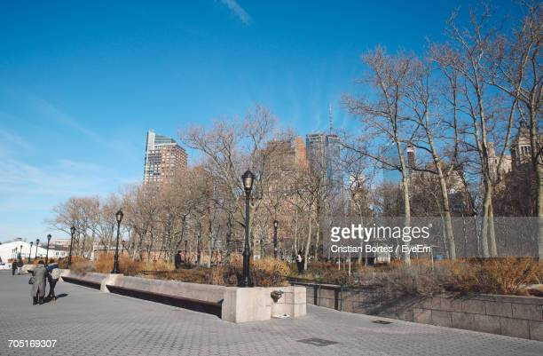 bare trees by walkway at battery park against sky - bortes stock-fotos und bilder