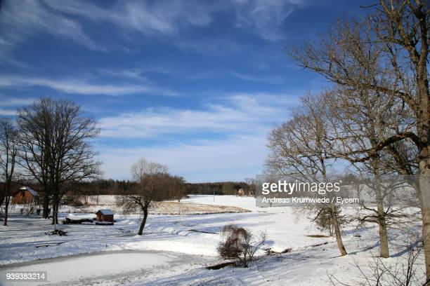 Bare Trees On Field Against Sky During Winter