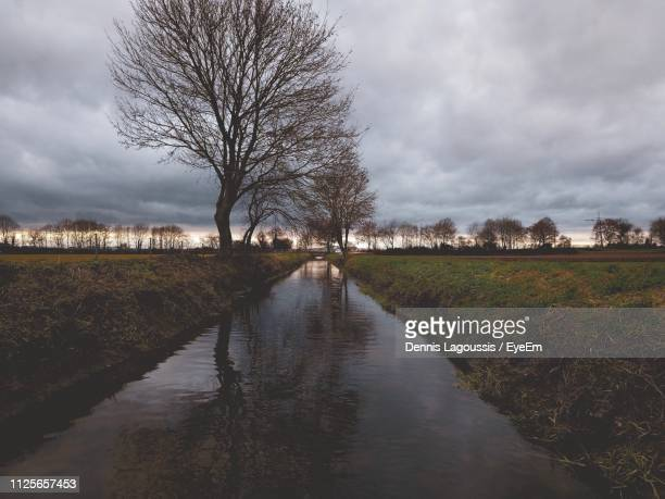 bare trees on field by canal against sky - storm dennis stock pictures, royalty-free photos & images