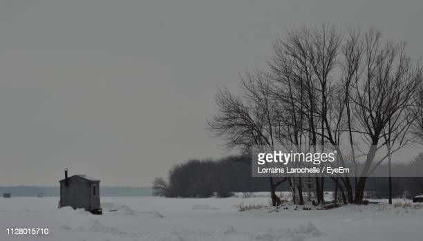 bare trees on snow covered field against sky - lorraine smothers stock pictures, royalty-free photos & images